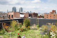 08 rooftop urban garden with grass