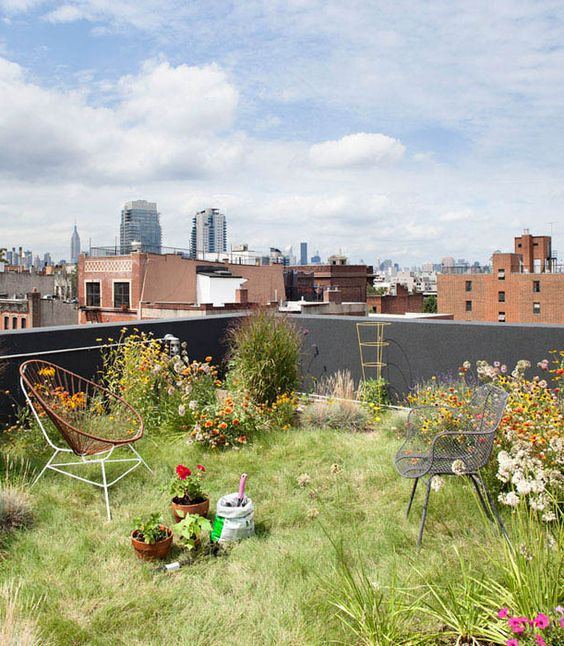 rooftop urban garden with grass