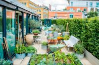 13 veggie rooftop garden with a greenhouse