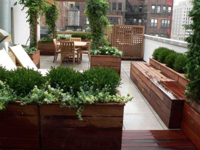 potted plants rooftop garden