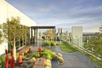 22 large rooftop garden with grass and desert plants