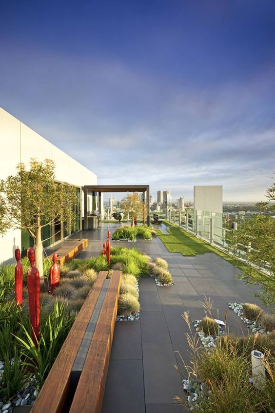 large rooftop garden with grass and desert plants