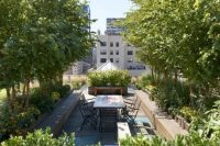 23 lavish rooftop garden with potted trees and plants