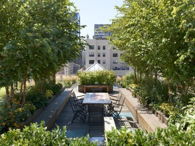 lavish rooftop garden with potted trees and plants