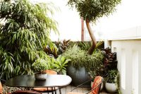 24 lush urban rooftop garden with potted plants