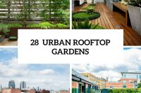 28 outdoor rooftop gardens cover