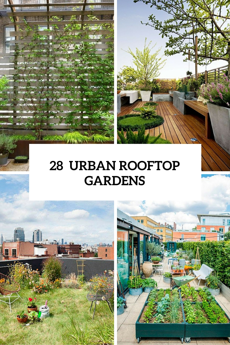 outdoor rooftop gardens cover