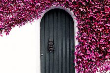 04 black front door surrounded by purple flowering ivy