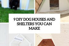 9-diy-dog-beds-and-shelters-you-can-make-cover
