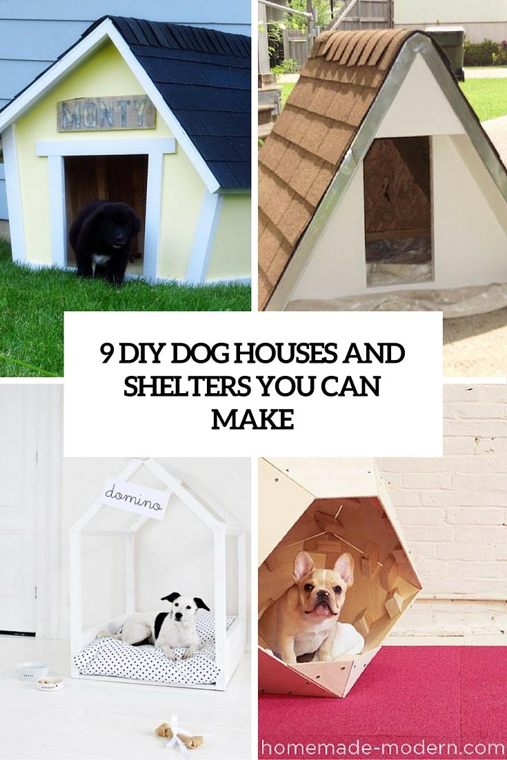 9 Creative DIY Dog House Ideas To Build