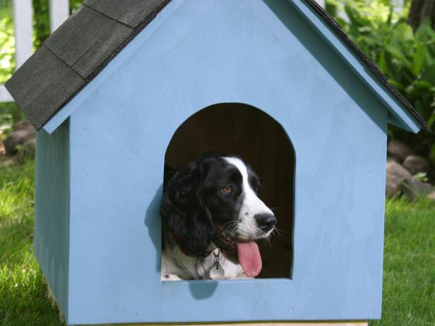 DIY simple blue shingle dog house (via diynetwork)