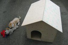 DIY simple plywood dog house