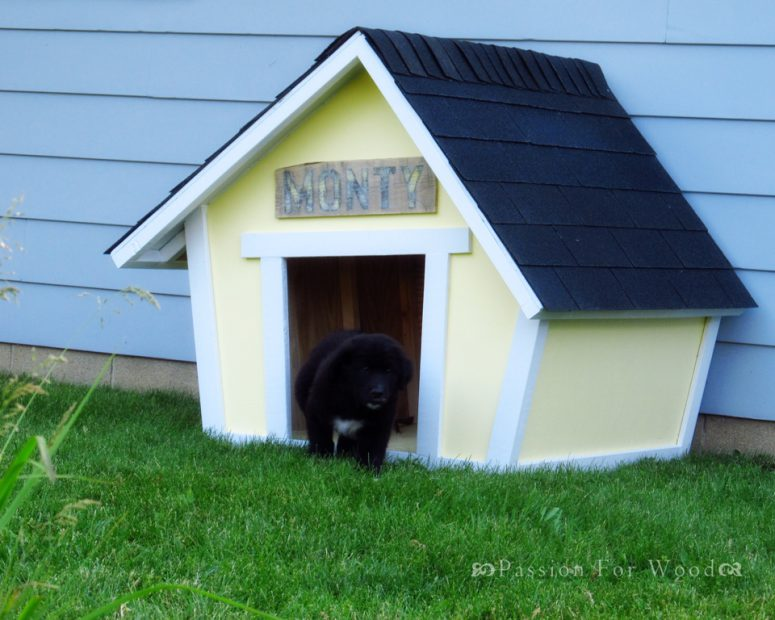 9 Creative Diy Dog House Ideas To Build Shelterness