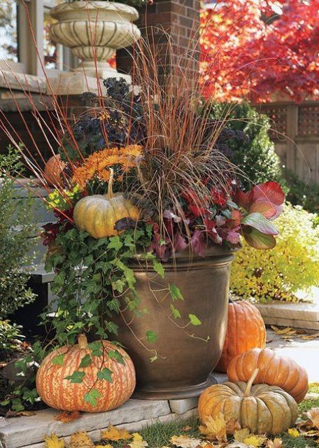 Fall Container Arrangement With Fall Plants And Flowers, Pumpkins Stacked  Around