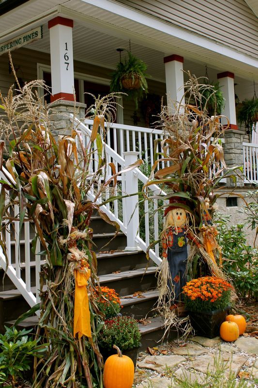 corn husks, pumpkins, orange potted flowers and a scarecrow