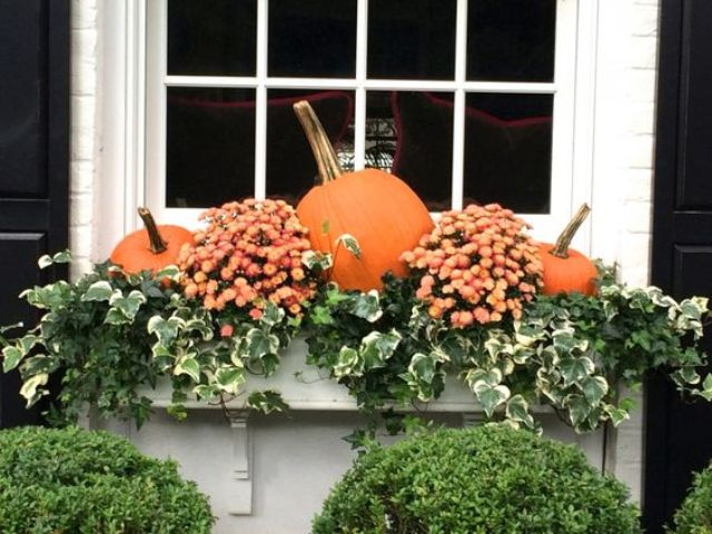 window boxes for fall displays of mums, greenery and pumpkins