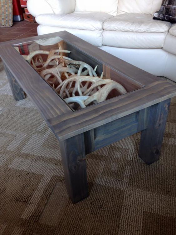 antlers display inside a coffee table