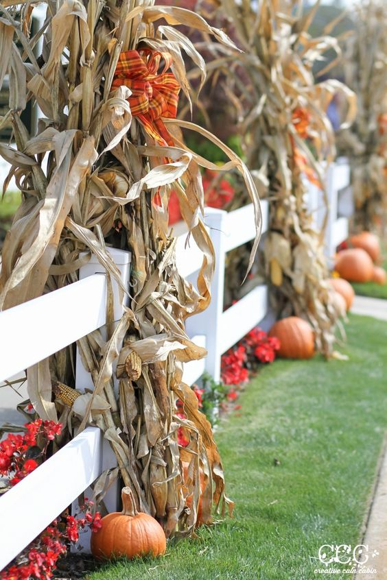 outdoor fence decor with corn stalks and plaid bows