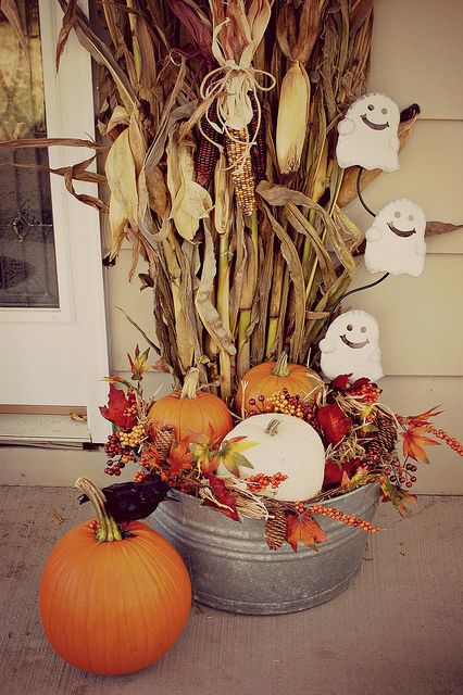 vintage washtub with pumpkins and corn stalks