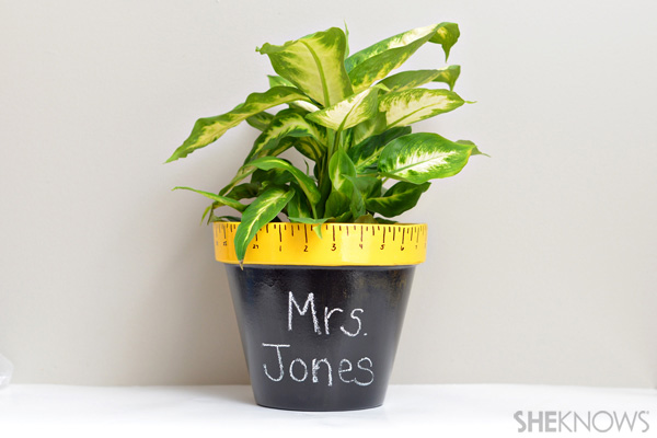 DIY potted plant in a personalized planter (via www.sheknows.com)