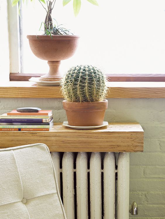 very thick light wood shelf used for plants