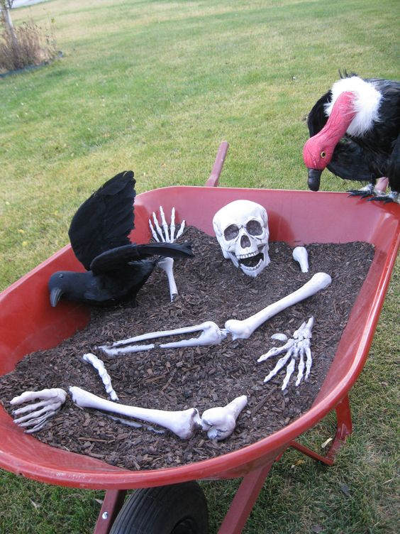 a skeleton and a black raven in your garden is a simple decoration that will take you just a couple of minutes