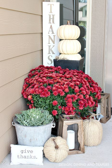 neutral decor with pumpkins and whitewashed container, bold red flowers