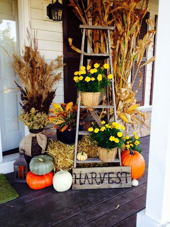 yellow potted flowers, hay, pumpkins and a sign