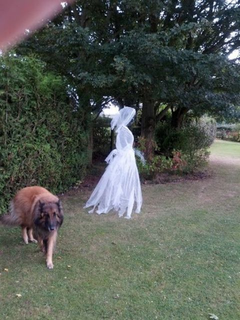 chicken wire ghost dressed in cheesecloth