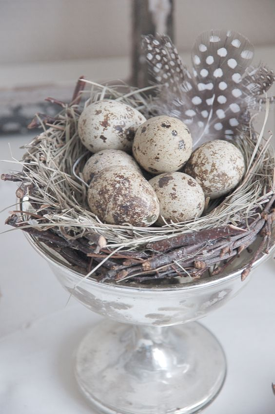 vintage silver, speckled eggs, nest and feathers create a beautiful Easter decoration