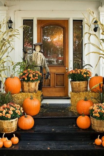 traditional Thanksgiving decor with real pumpkins, potted flowers and a scarecrow