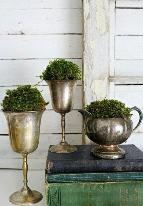 creative vintage silver containers filled with moss