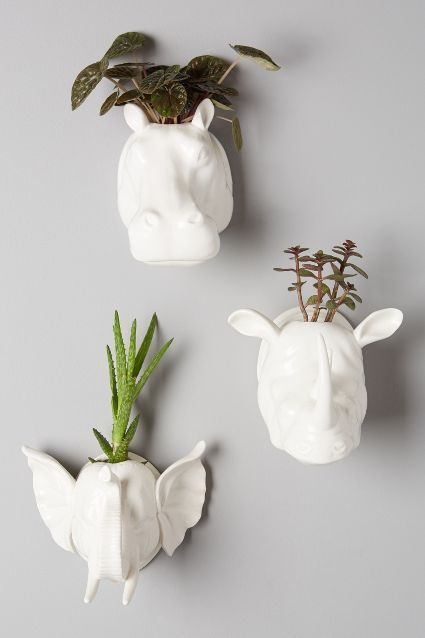 wall-mounted animal planters are a great functional idea