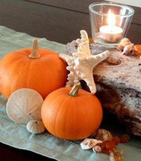 driftwood, pumpkins, sea creatures and candles