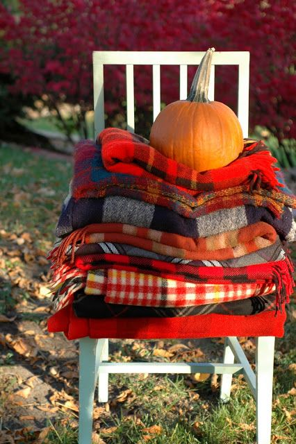 plaid throw blankets for your guests as a Thanksgiving party