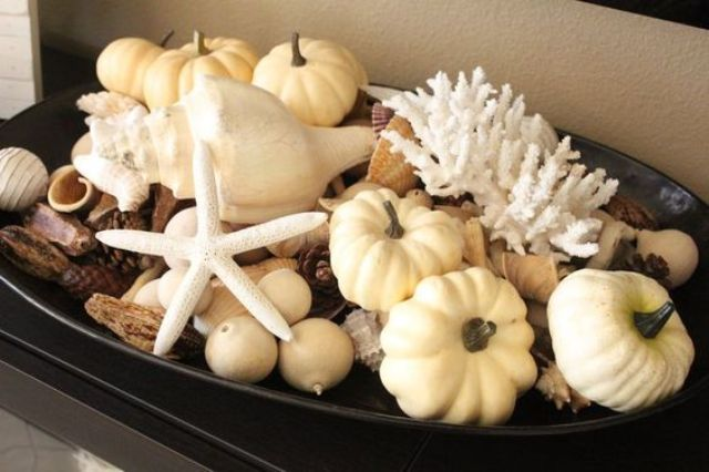 pumpkins, corals and seashells go surprisingly well together
