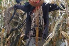 25 Halloween scarecrow to frighten everyon in your backyard