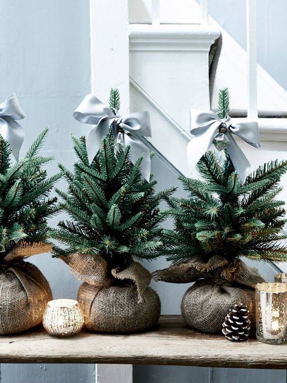 a trio of fir trees in burlap, grey bow toppers