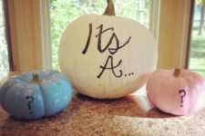06 fall gender reveal idea with pumpkins