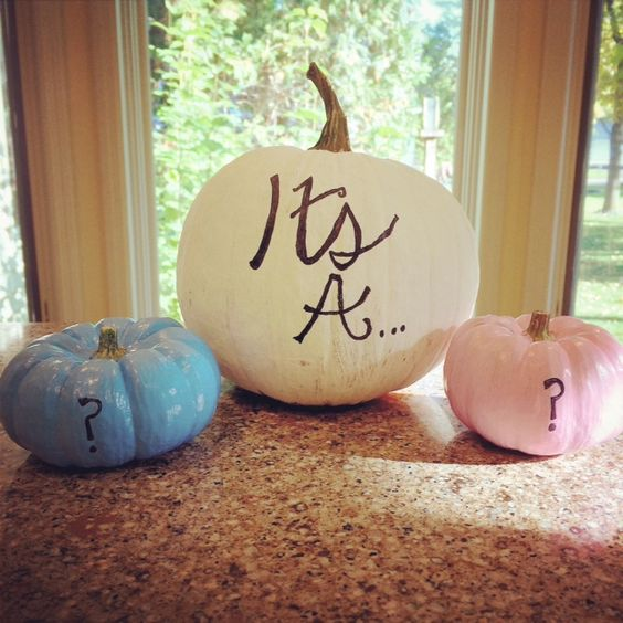 fall gender reveal idea with pumpkins