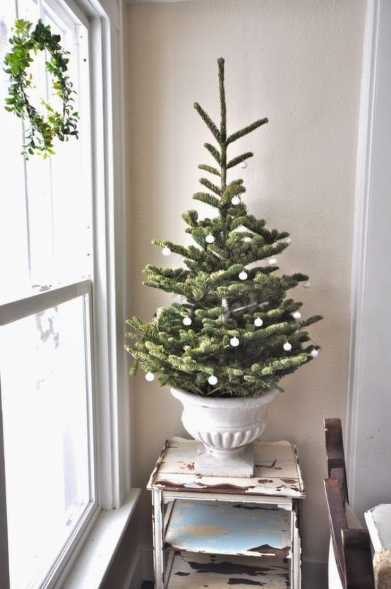 elegant tree in an urn with white decor