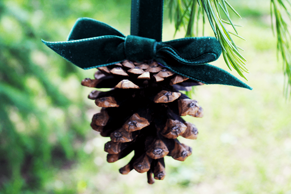 DIY hanging pinecone ornaments with velvet bows