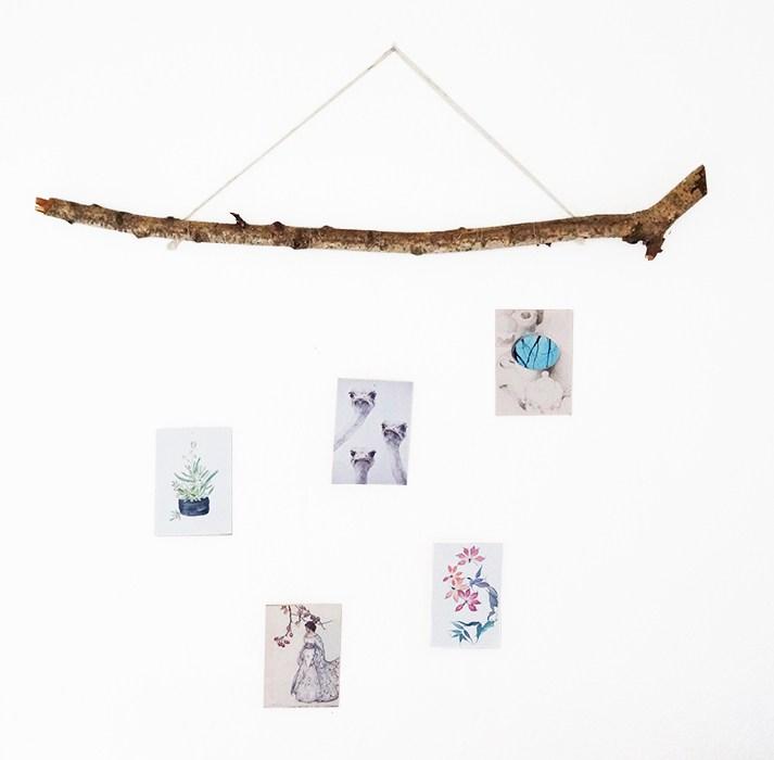 DIY photo display on a branch (via nur-noch.com)