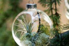 03 air plant ornaments as small terrariums