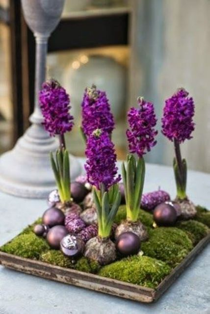 wooden tray with blooming bubs and ornaments in corresponding colors