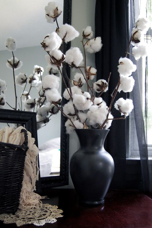 cotton balls arrangement in a black vase for a contrast