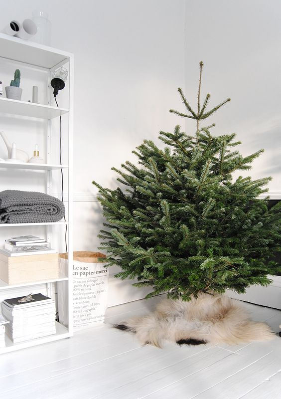 cover the base of your tree with fur