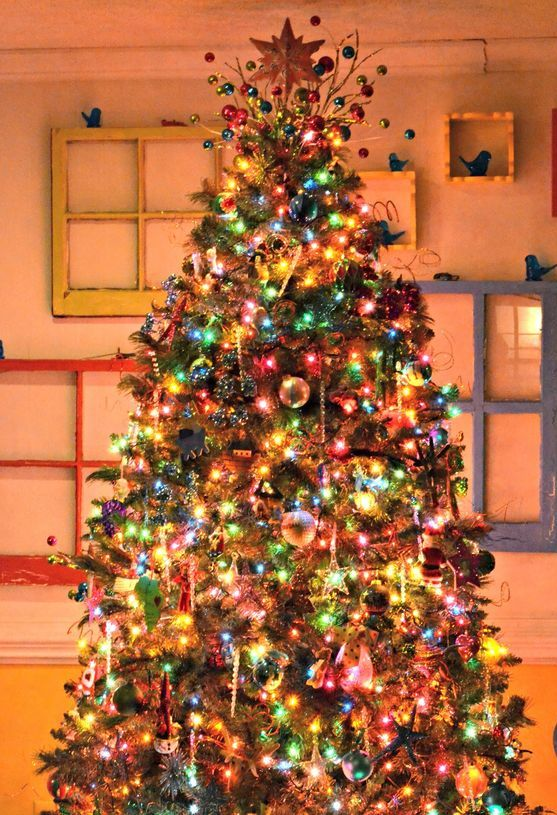 a traditional tree decorated in all colors available