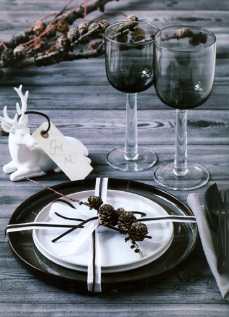 dark glasses, pinecones and branches, black and white plates