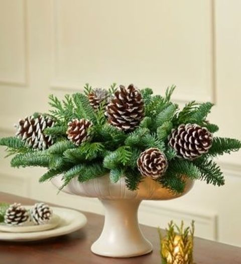 a bowl with evergreens and pinecones